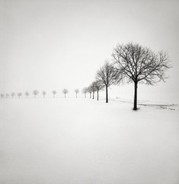 Snow Scene III