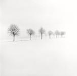 Snow Scene VII