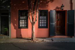 Tree Shadows, Charleston, South Carolina