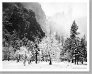 Bridalveil Falls, Snowstorm, Yosemite