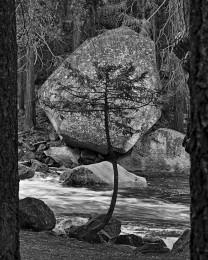 Point of View, Yosemite