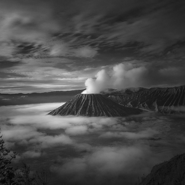 Land Before Time, Java (ALT11)
