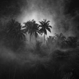Apocalypse Now, Banda (NR09)