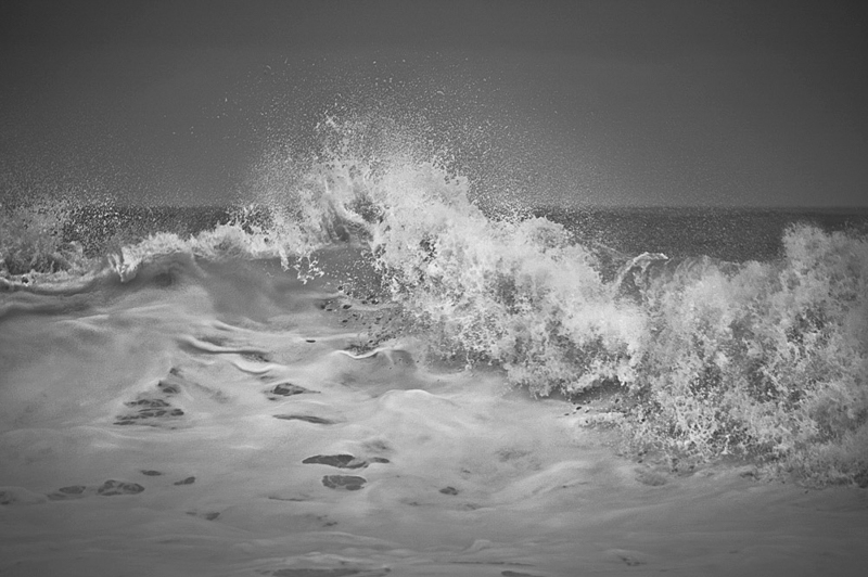 White Wave, Java (WV09)