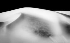 Oceano Dunes #5008