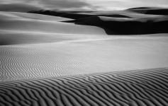Oceano Dunes #5475