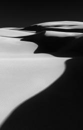 Oceano Dunes #5481