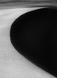Oceano Dunes #5499