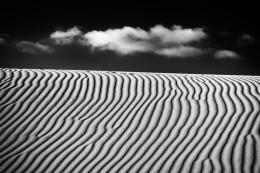 Oceano Dunes #5539