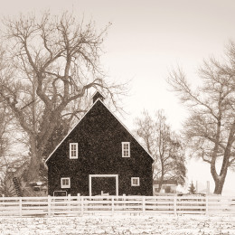 The Black Barn, CO (A)