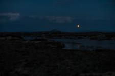 Full Moon over Bog Road
