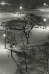 Washington Square, Night