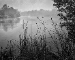 Foggy Lagoon, Oceano