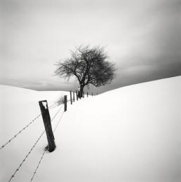 Snow Scene V, Sweden