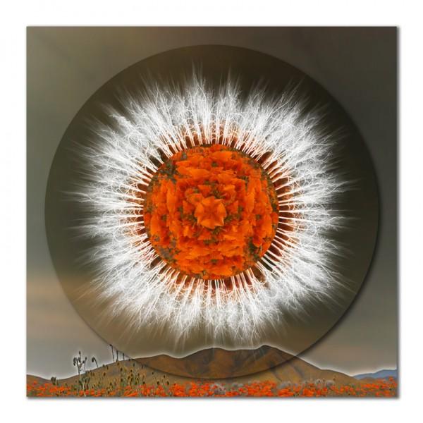 Safeguarding Poppies Mandala – 1
