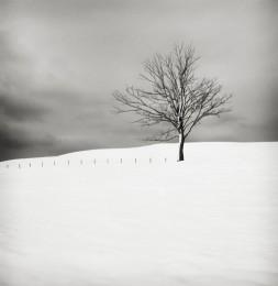 Snow Scene VI, Sweden