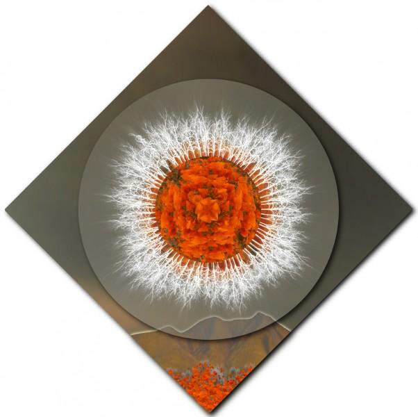 Safeguarding Poppies Mandala – DIAMOND ORIENTATION