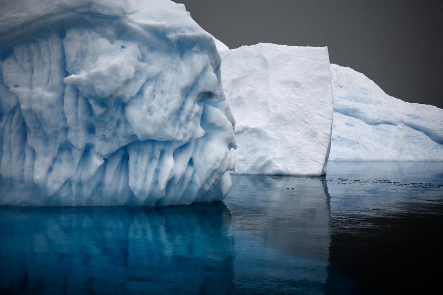 Bergy Bits in Errera Channel, Antarctic Peninsula