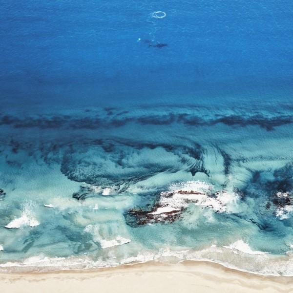 Humpback Whales, Kalbari, Western Australia