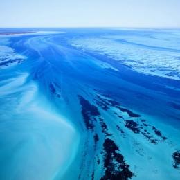 Shark Bay (Square 1), Australia