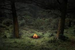 Fires 4