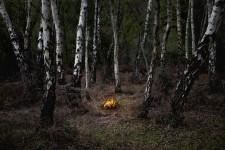 Fires 6
