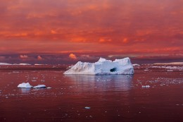 Iceberg in Blood Red Sea, Lemaire Channel, Antarctica
