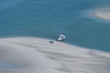 Beach Picnic with Seagulls near Point Judith #483-8039