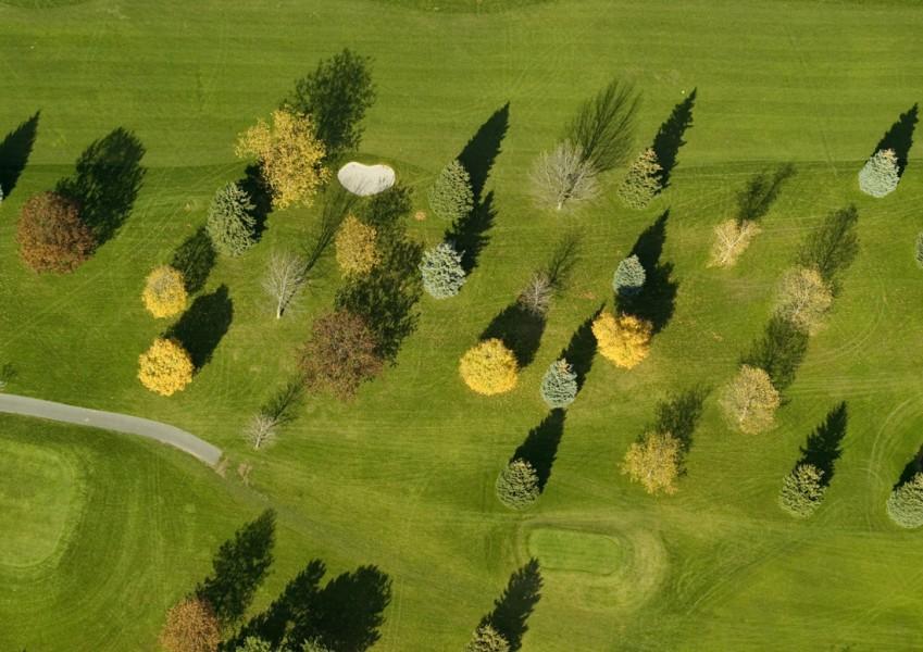 Golf Course Trees and Shadows, near Lock Berlin, NY
