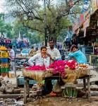 Flower Sellers, Bundi Market