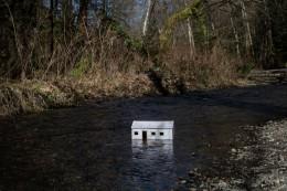 March 2, Coal Creek