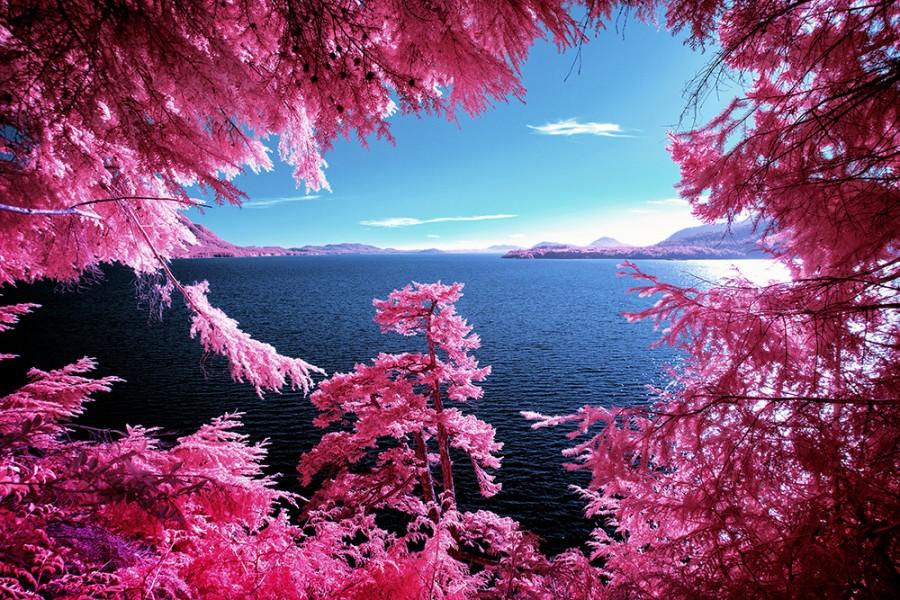 Kennedy Lake, Canada