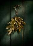 Leaves on Door