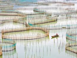 Nets, Ningde, Fugian People's Republic of China