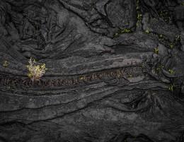 New Life, Lava Field