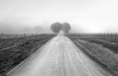 Saligari Road, Mansfield, Victoria, Australia