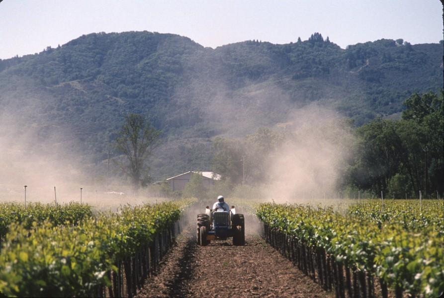 Vineyard Spraying