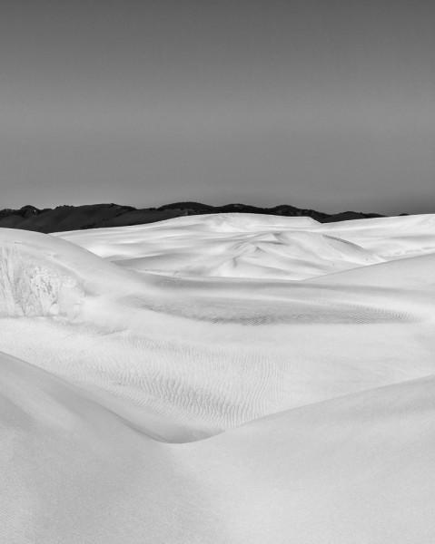 Sand Dunes to Oak Woodlands (Dune Anatomy)