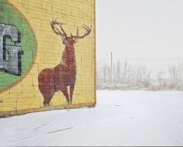 Deer Crossing, Alberta, CA