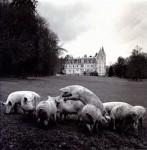 La Vie de Chateau: Philippe Salaün