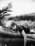 The Sleeping Tree